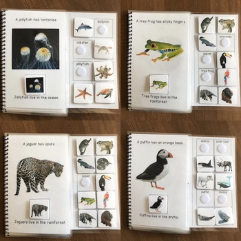 Animal Habitats - Repetitive Readers Interactive (Adapted) Books for Special Ed