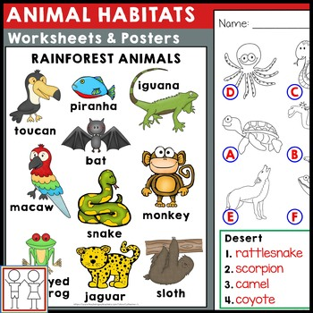 animal habitats worksheets by catherine s teachers pay teachers. Black Bedroom Furniture Sets. Home Design Ideas