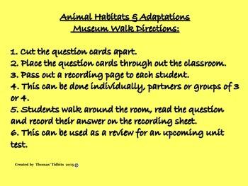 Animal Habitats and Adaptations Museum Walk