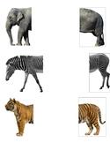 Animal Halves Matching