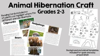 Animal Hibernation Activity
