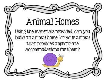 Animal Homes: An Engineering Project / STEMtivity with BONUS Prezi