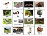 Animal Home Names