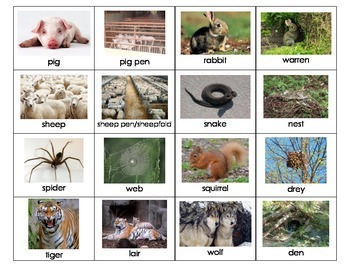 Animal Home Names by My Teaching Inspiration | Teachers ...