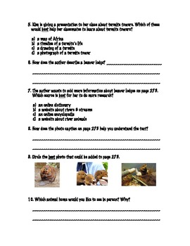 Animal Homes: Informational Text Practice (Treasures)