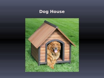 Animal Homes Power Point