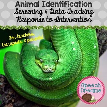 Animal Identification {Autism Real Photo Cards Expressive Receptive Language}