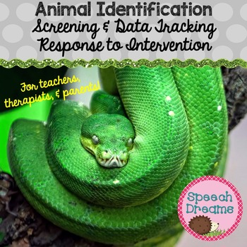 Animal Identification {Autism Real Photo Cards Expressive