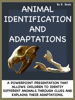 Animal Adaptations Interactive PowerPoint Presentation - 103 Slides