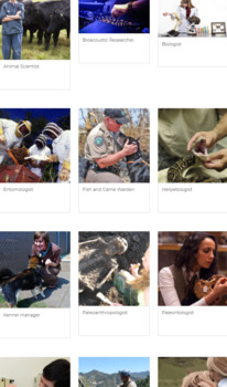 Animal Industry and Careers With Animals Webquest