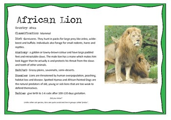 African Animals Information... by The Willow Tree | Teachers Pay ...