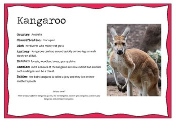 Australian Animals Information posters