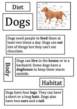 Animal Information Report