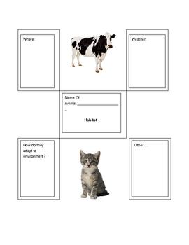 Animal Informational Report