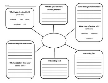 Animal Informative Writing Graphic Organizer
