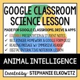 Animal Intelligence Google Classroom Lesson
