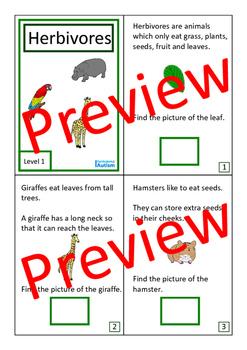 Animals Biology Books BUNDLE Autism Special Education