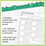 Animal Internet Research Activity Worksheet