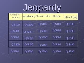Animal Jeopardy PowerPoint