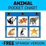 Animal Kingdom Pocket Chart Center