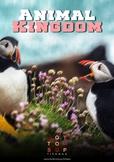 Animal Kingdom Board Game