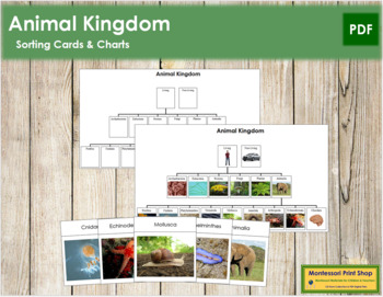 Animal Kingdom: Charts and Cards