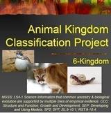 Animal Kingdom Classification Project