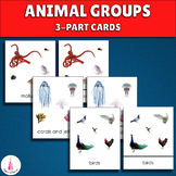 Animal Groups Montessori 3-part cards