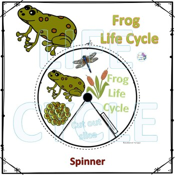 Animal Kingdom Life Cycle Spinner Bundle 1