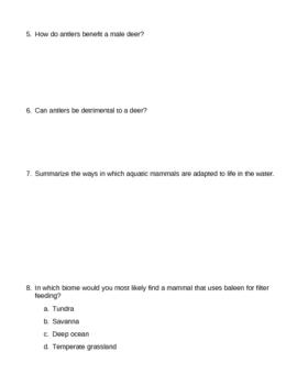 Animal Kingdom Mammals Homework Assignment 2
