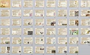 Animal Kingdom Mammals Smartboard Notebook Presentation Lesson Plan