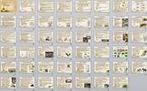 Animal Kingdom Mammals Unit Bundle - 8 files