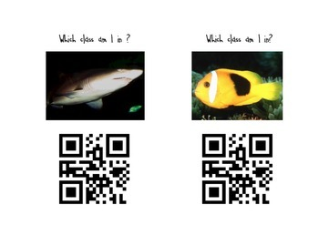 Animal Kingdom Note-taking Page with QR codes