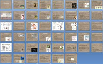 Animal Kingdom Overview Smartboard Notebook Presentation Lesson Plan