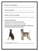 Animal Kingdom Packet