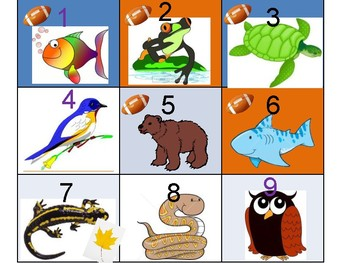 Animal Kingdom Pattern