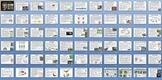 Animal Kingdom Reptiles and Birds Unit Bundle - 9 Files