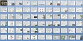 Animal Kingdom Reptiles and Birds Unit Bundle - 8 Files