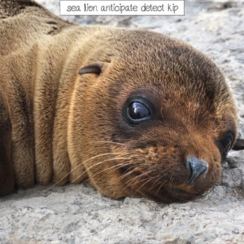 Animal Kingdom Academic Science Words Writing Prompts