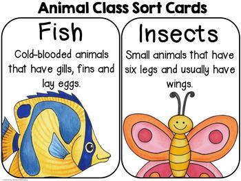 Animal Classes {A 2nd Grade Science Mini-Unit}