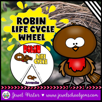 Animal Life Cycle Activities (Robin Life Cycle Craft)