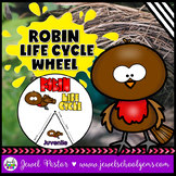 Animal Life Cycle Activities (Robin Life Cycle Craft)