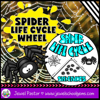 Science Halloween Activities (Spider Life Cycle Craft)