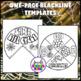 Animal Life Cycle Activities (Spider Life Cycle Craft)