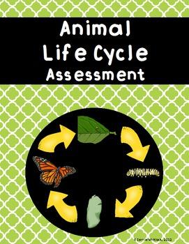 Animal Life Cycle Activity Sheet