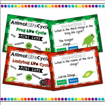 Animal Life Cycle Bundle