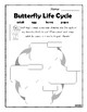 Animal Life Cycles Frog, Butterfly, Create Your Own