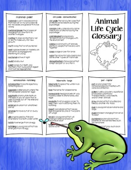 Animal Life Cycle Research Books