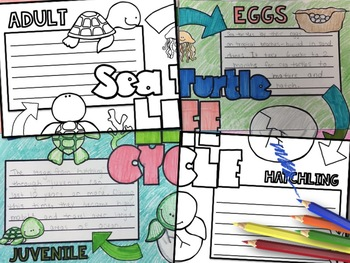 Animal Life Cycles Printable Activity - Science Collaboration Poster Bundle