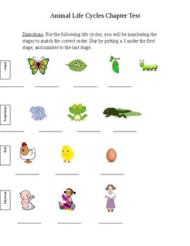 Animal Life Cycles Chapter Test